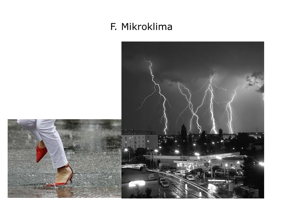 F. Mikroklima