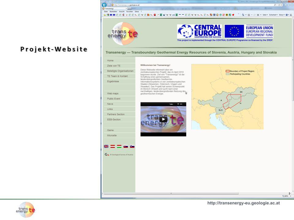 Projekt-Website