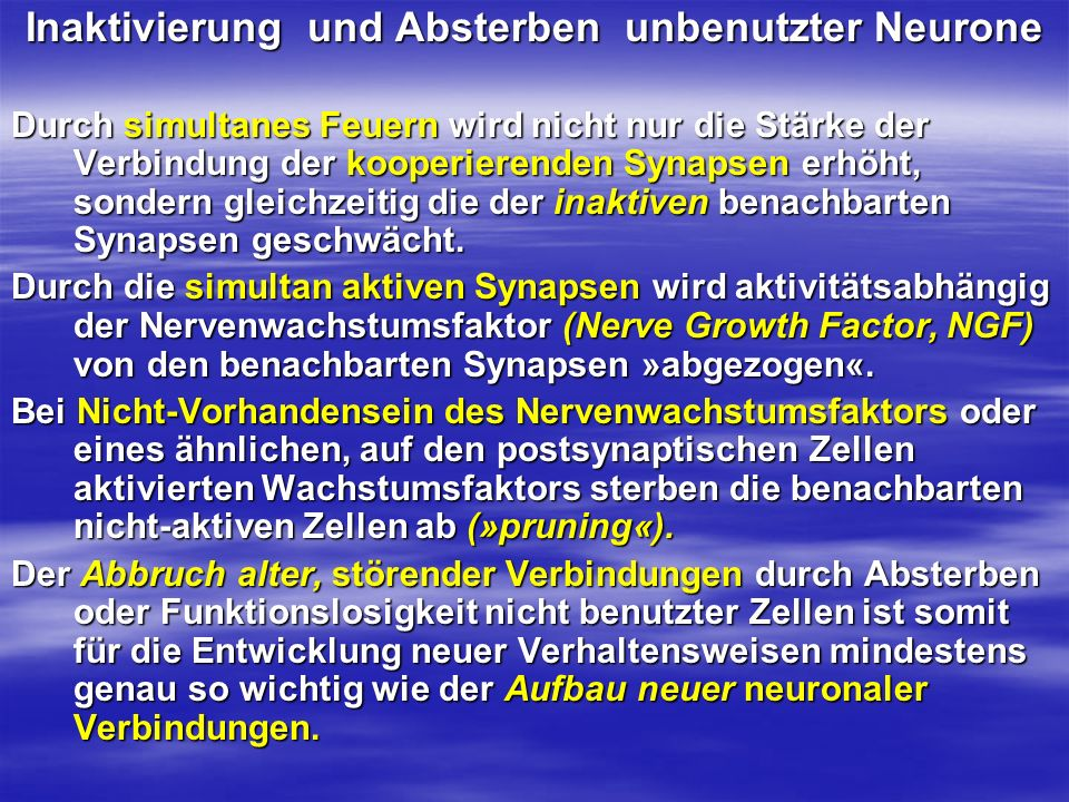 Inaktivierung und Absterben unbenutzter Neurone