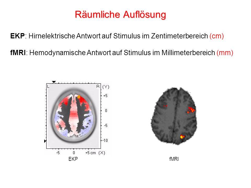 Räumliche Auflösung EKP: Hirnelektrische Antwort auf Stimulus im Zentimeterbereich (cm)