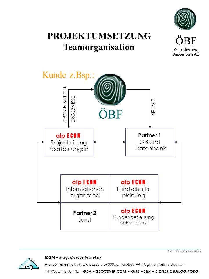 PROJEKTUMSETZUNG Teamorganisation