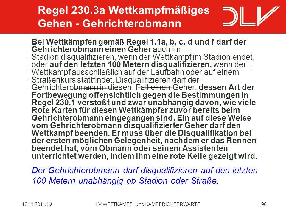 Regel 230.3a Wettkampfmäßiges Gehen - Gehrichterobmann