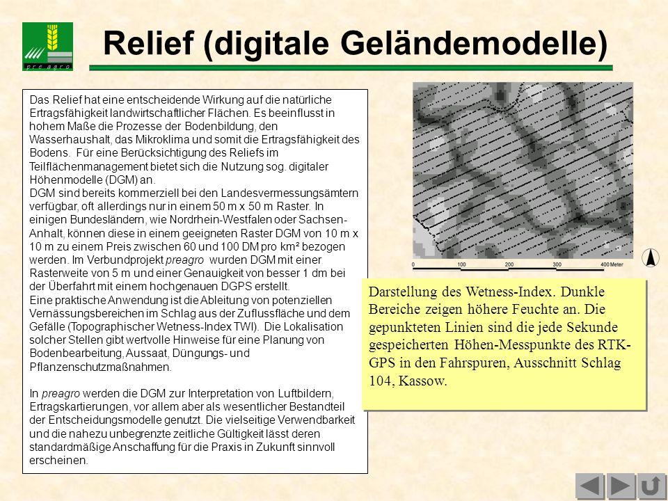 Relief (digitale Geländemodelle)