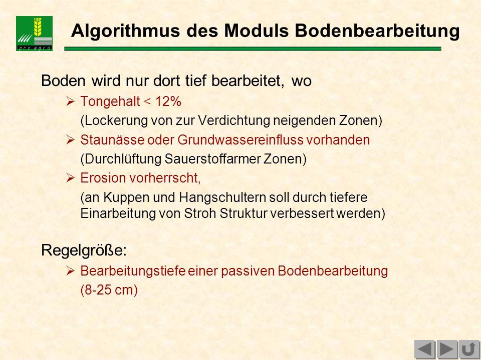 Algorithmus des Moduls Bodenbearbeitung