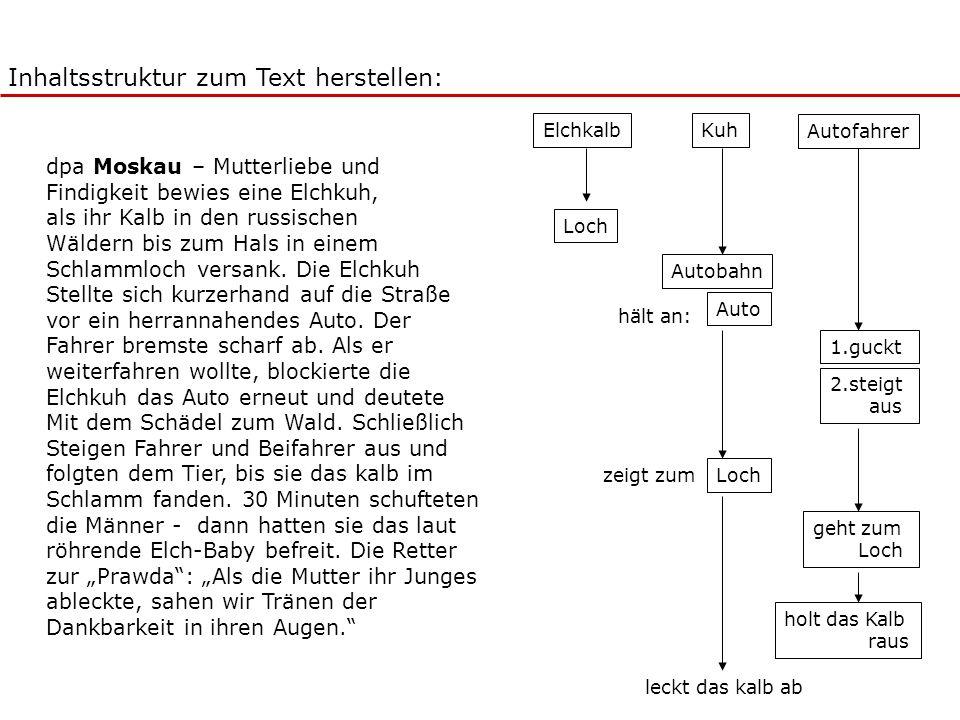 Inhaltsstruktur zum Text herstellen: