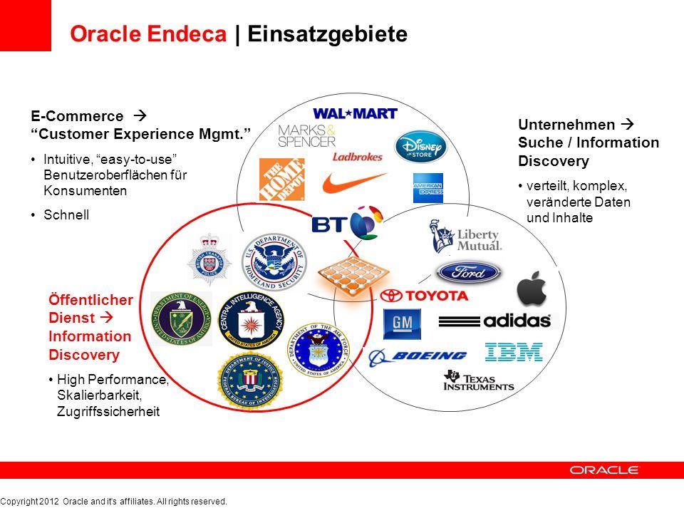 Oracle Endeca | Einsatzgebiete