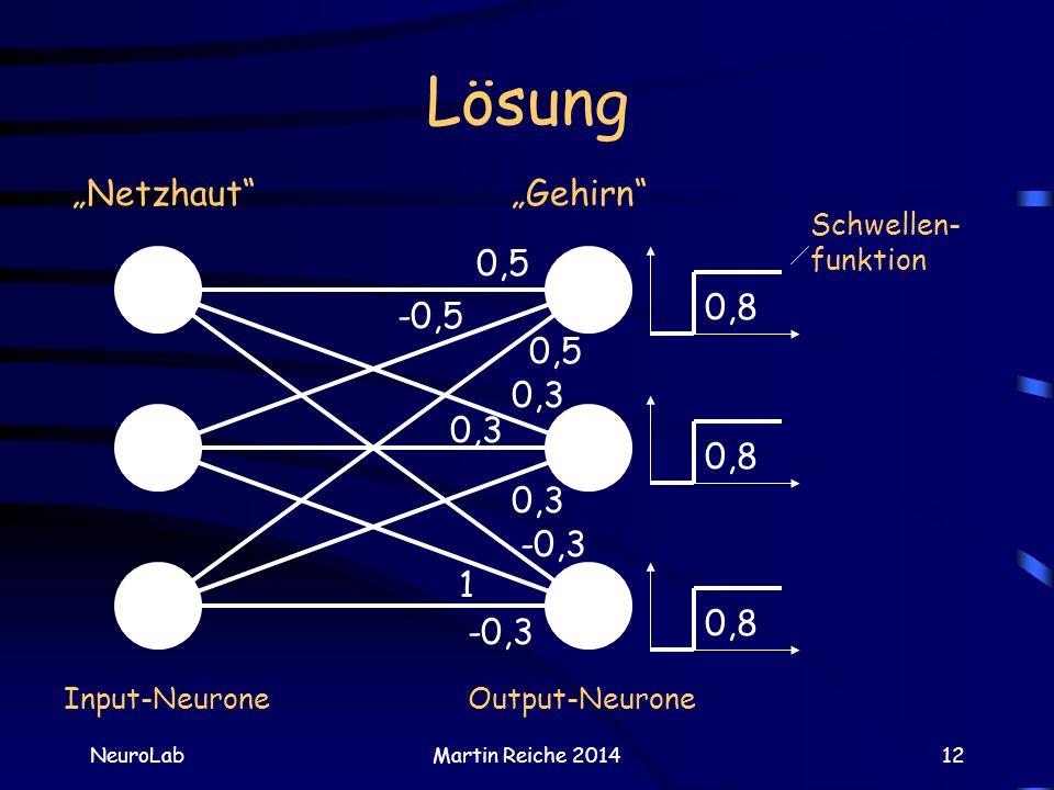 """Lösung """"Netzhaut """"Gehirn 0,5 0,8 -0,5 0,5 0,3 0,8 0,3 0,3 -0,3 1 0,8"""