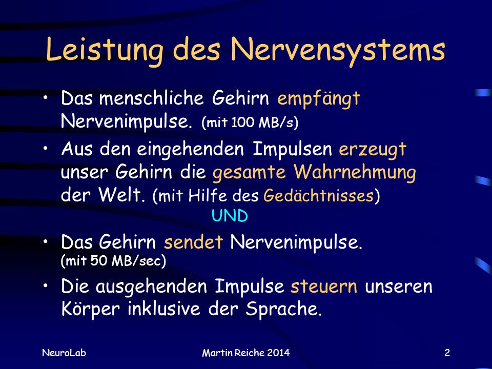 Leistung des Nervensystems
