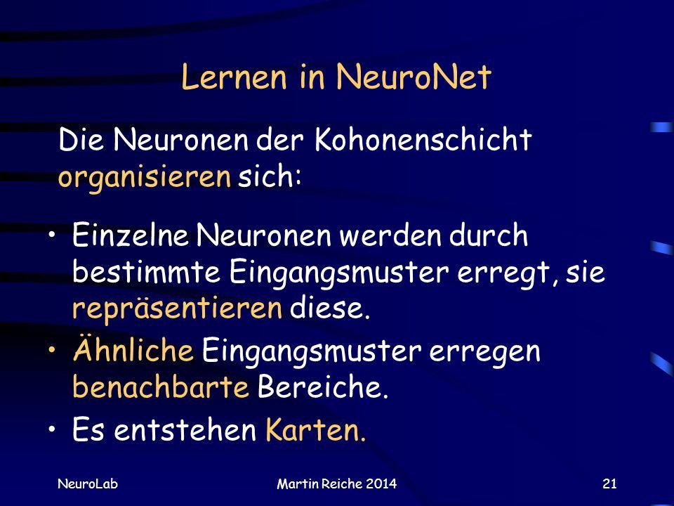 Lernen in NeuroNet Die Neuronen der Kohonenschicht organisieren sich: