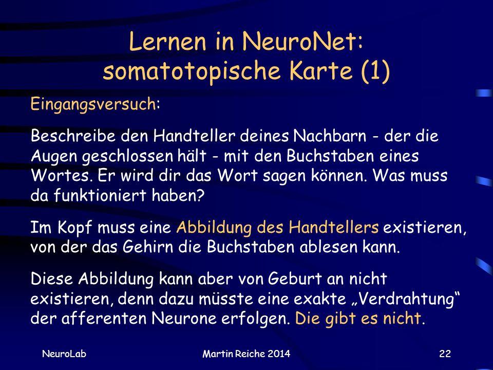 Lernen in NeuroNet: somatotopische Karte (1)