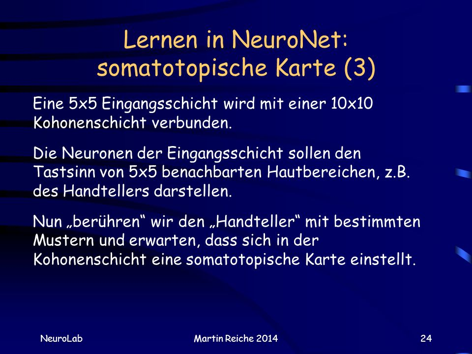 Lernen in NeuroNet: somatotopische Karte (3)