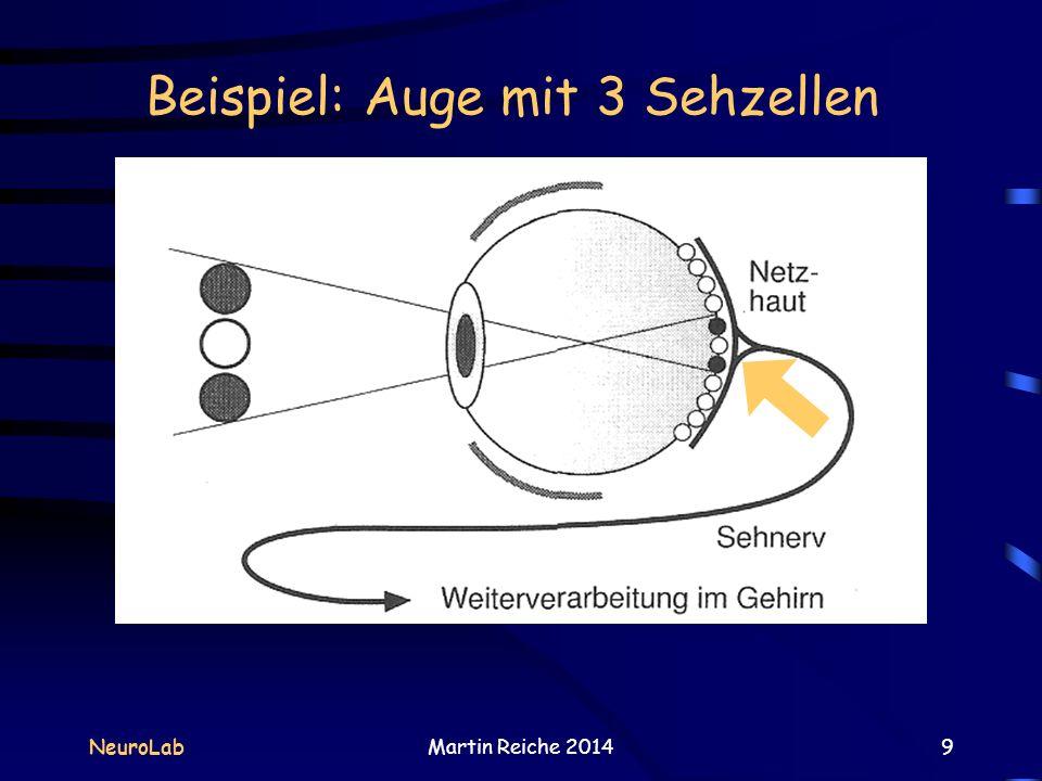 Beispiel: Auge mit 3 Sehzellen