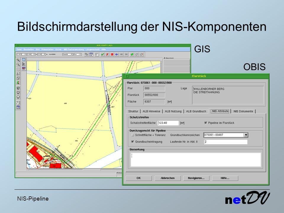 Bildschirmdarstellung der NIS-Komponenten