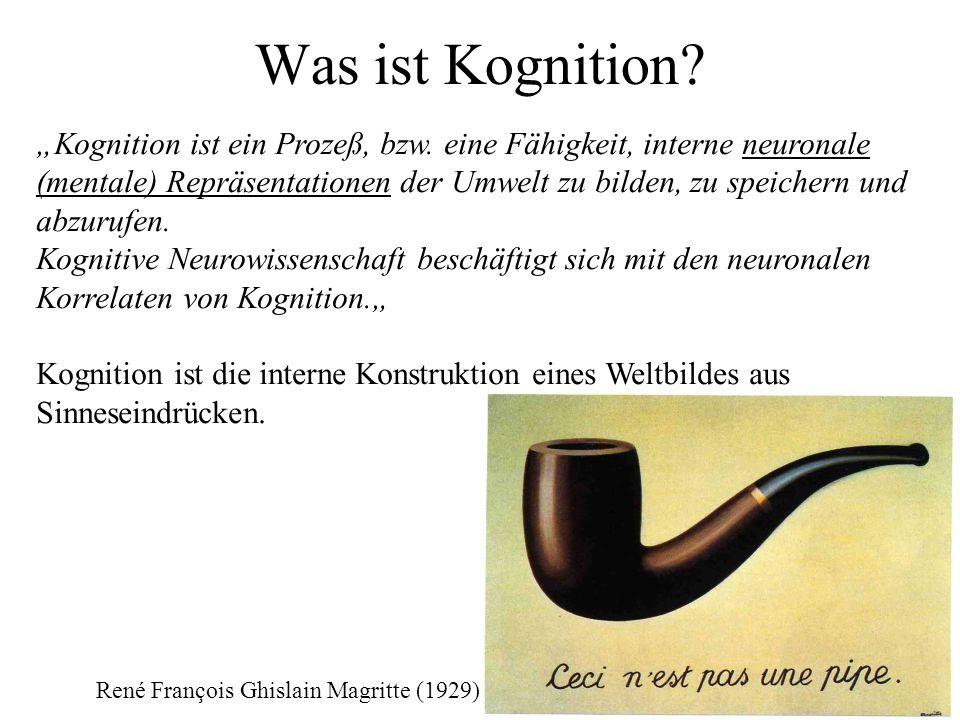 Was ist Kognition