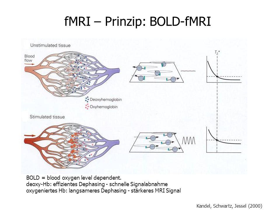 fMRI – Prinzip: BOLD-fMRI