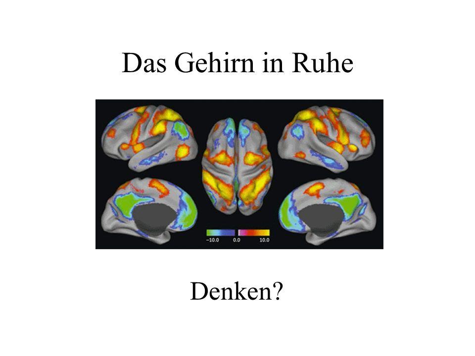 Das Gehirn in Ruhe Denken