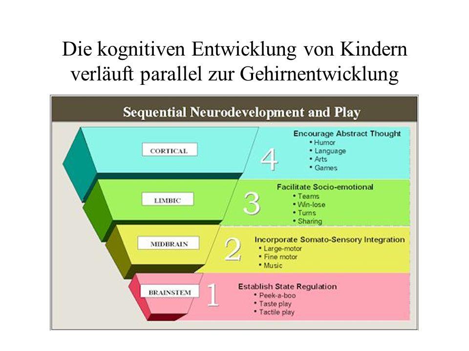 Die kognitiven Entwicklung von Kindern verläuft parallel zur Gehirnentwicklung