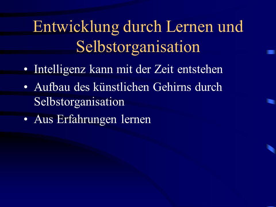 Entwicklung durch Lernen und Selbstorganisation
