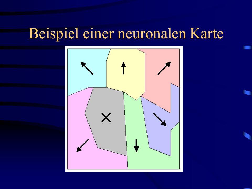 Beispiel einer neuronalen Karte