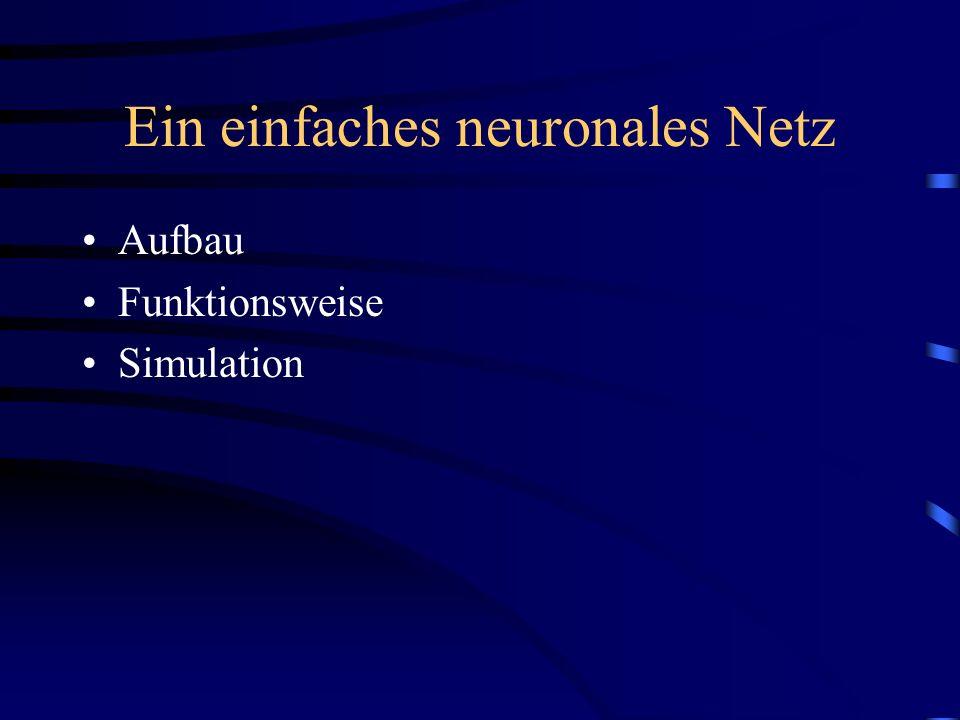 Ein einfaches neuronales Netz