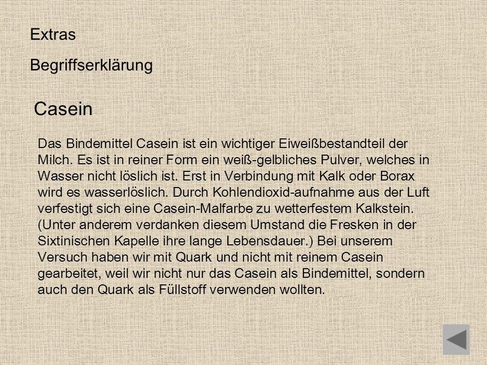 Casein Extras Begriffserklärung