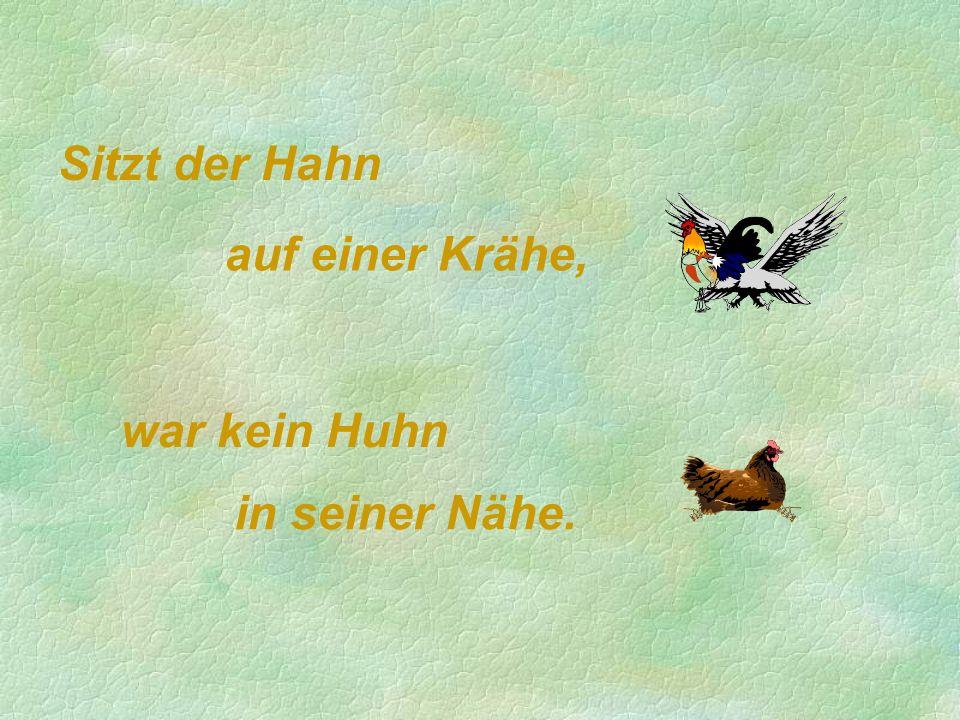 Sitzt der Hahn auf einer Krähe, war kein Huhn in seiner Nähe.