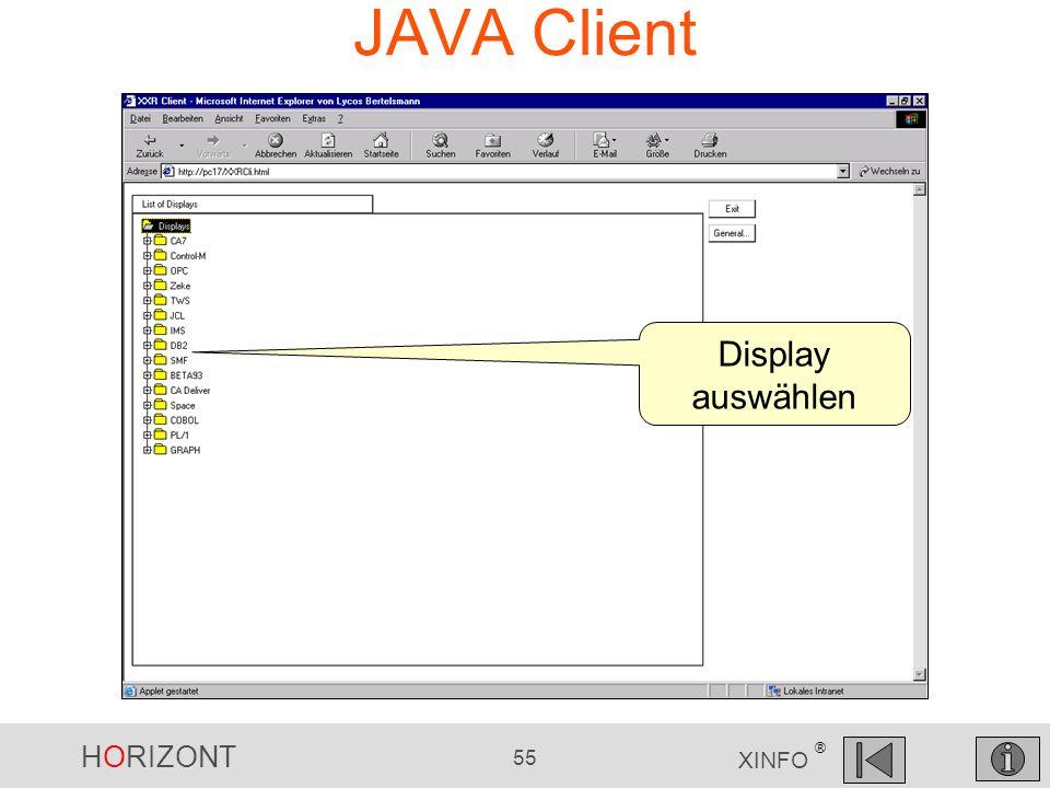 JAVA Client Display auswählen