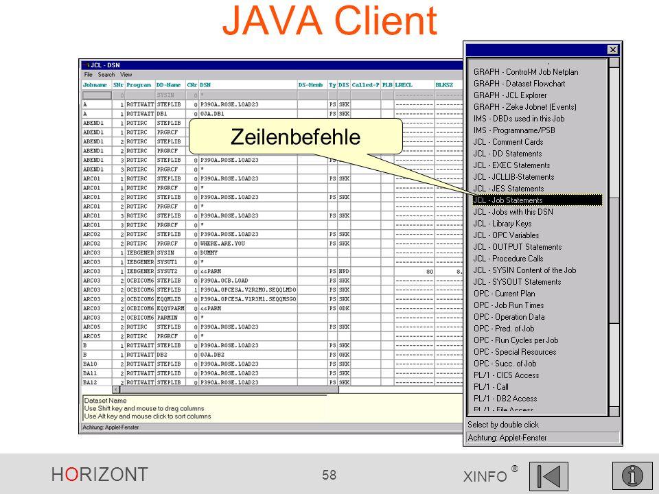 JAVA Client Zeilenbefehle