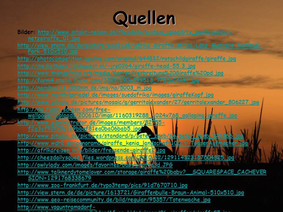 Quellen Bilder: http://www.intakt-reisen.de/fileadmin/system_upload/tx_pumtravel/cr-netzgiraffe_01.jpg.