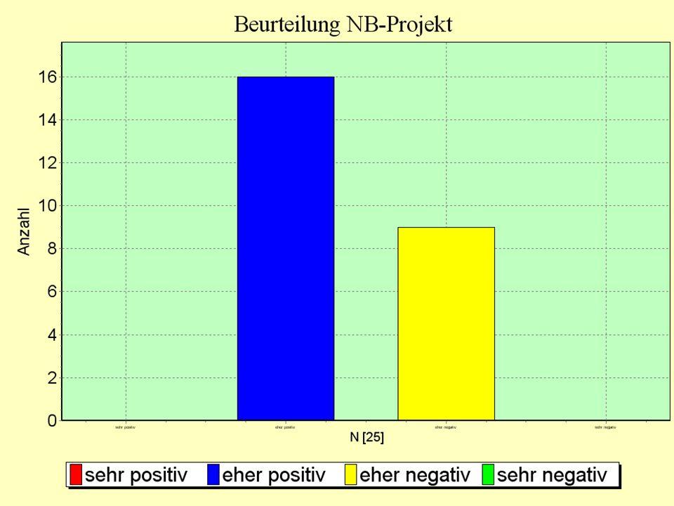 Beurteilung des NB-Projektes