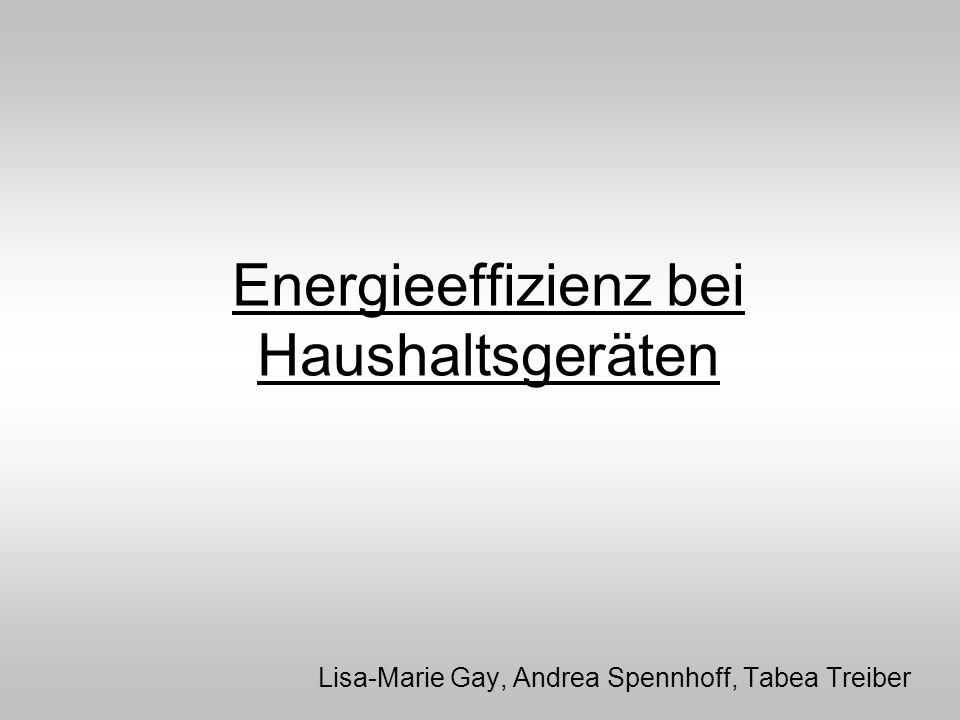 Energieeffizienz bei Haushaltsgeräten