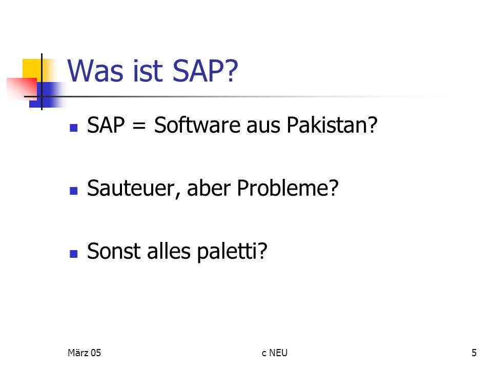 Was ist SAP SAP = Software aus Pakistan Sauteuer, aber Probleme