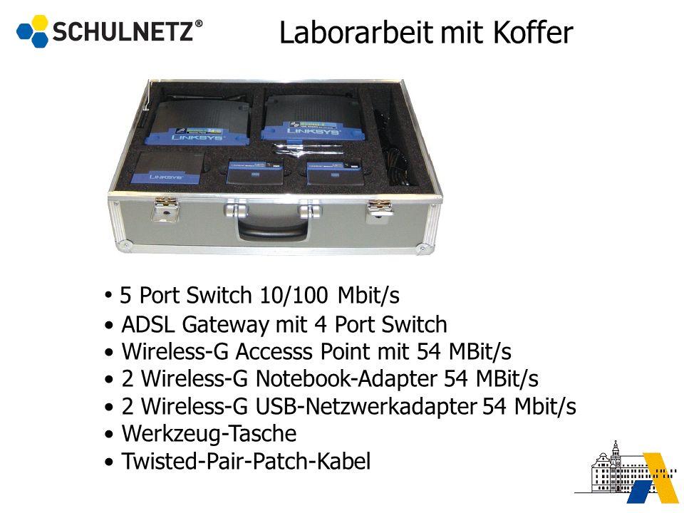 Laborarbeit mit Koffer