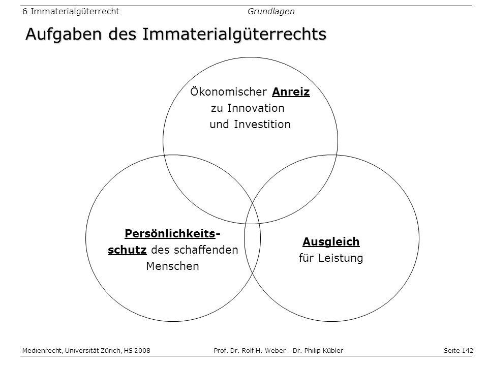 Aufgaben des Immaterialgüterrechts