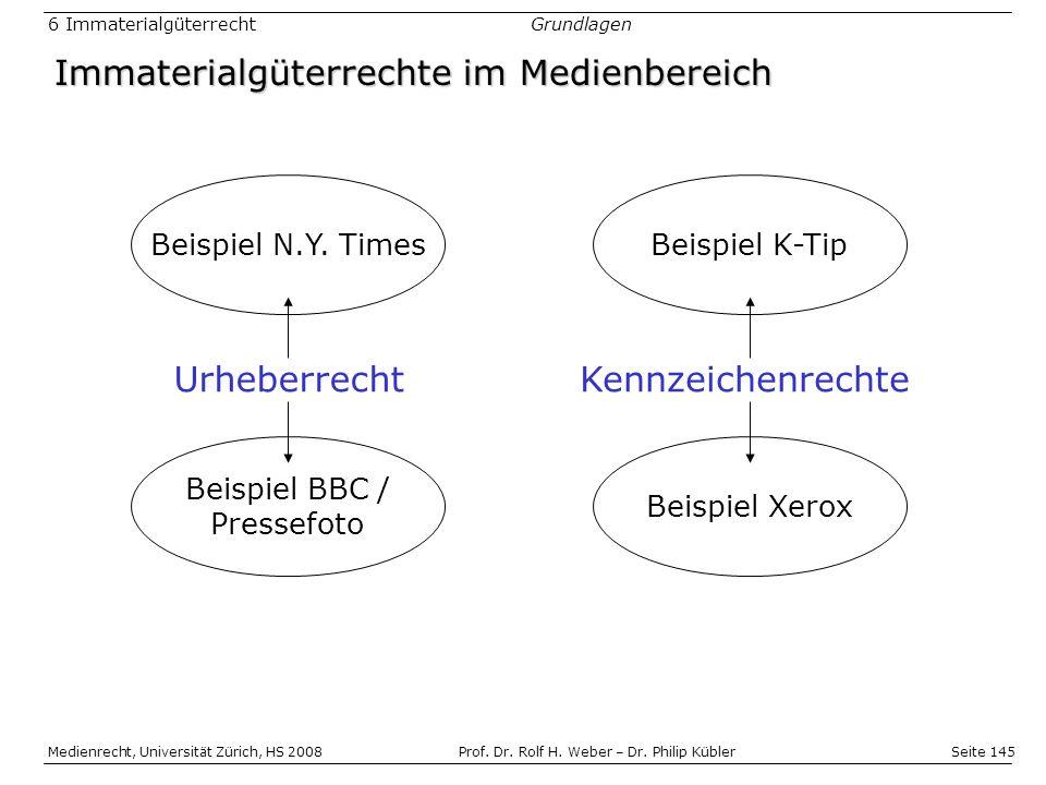 Immaterialgüterrechte im Medienbereich