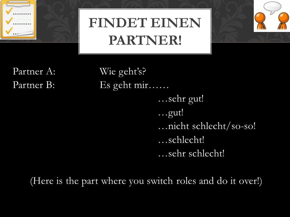 Findet einen Partner!