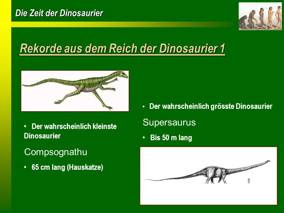 Rekorde aus dem Reich der Dinosaurier 1