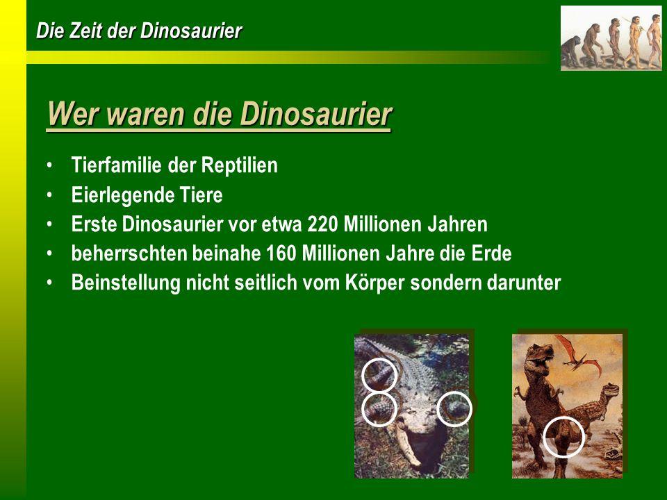 Wer waren die Dinosaurier