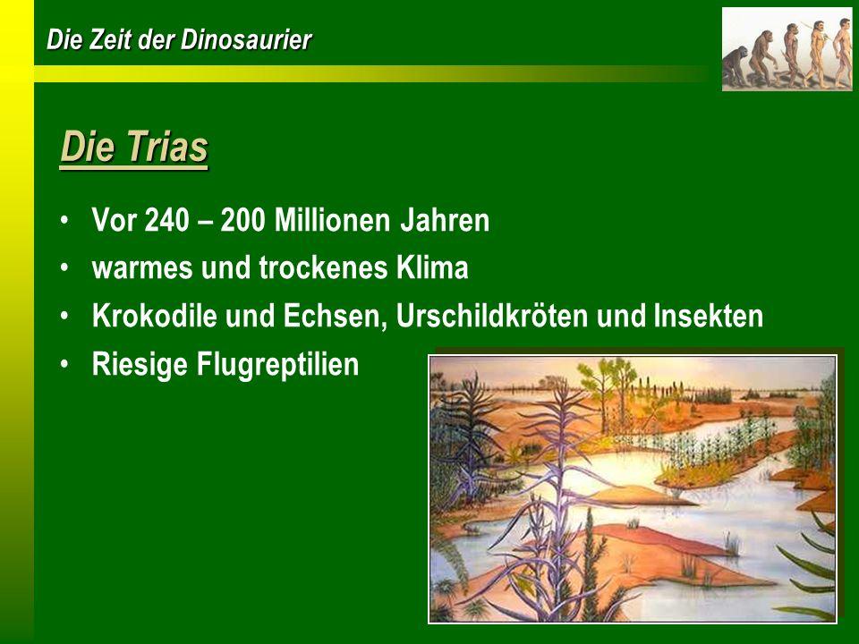Die Trias Vor 240 – 200 Millionen Jahren warmes und trockenes Klima