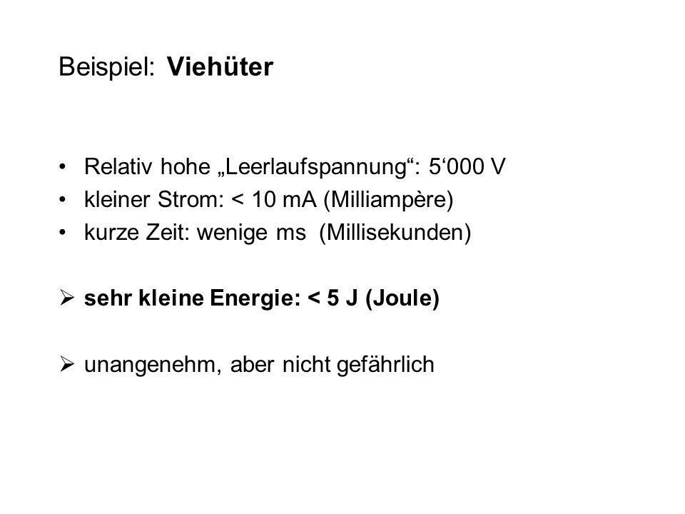 """Beispiel: Viehüter Relativ hohe """"Leerlaufspannung : 5'000 V"""