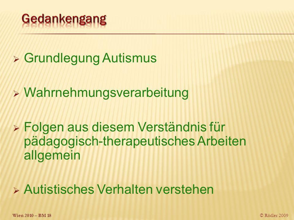 Gedankengang Grundlegung Autismus. Wahrnehmungsverarbeitung. Folgen aus diesem Verständnis für pädagogisch-therapeutisches Arbeiten allgemein.