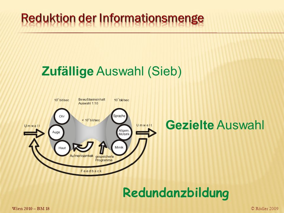 Reduktion der Informationsmenge