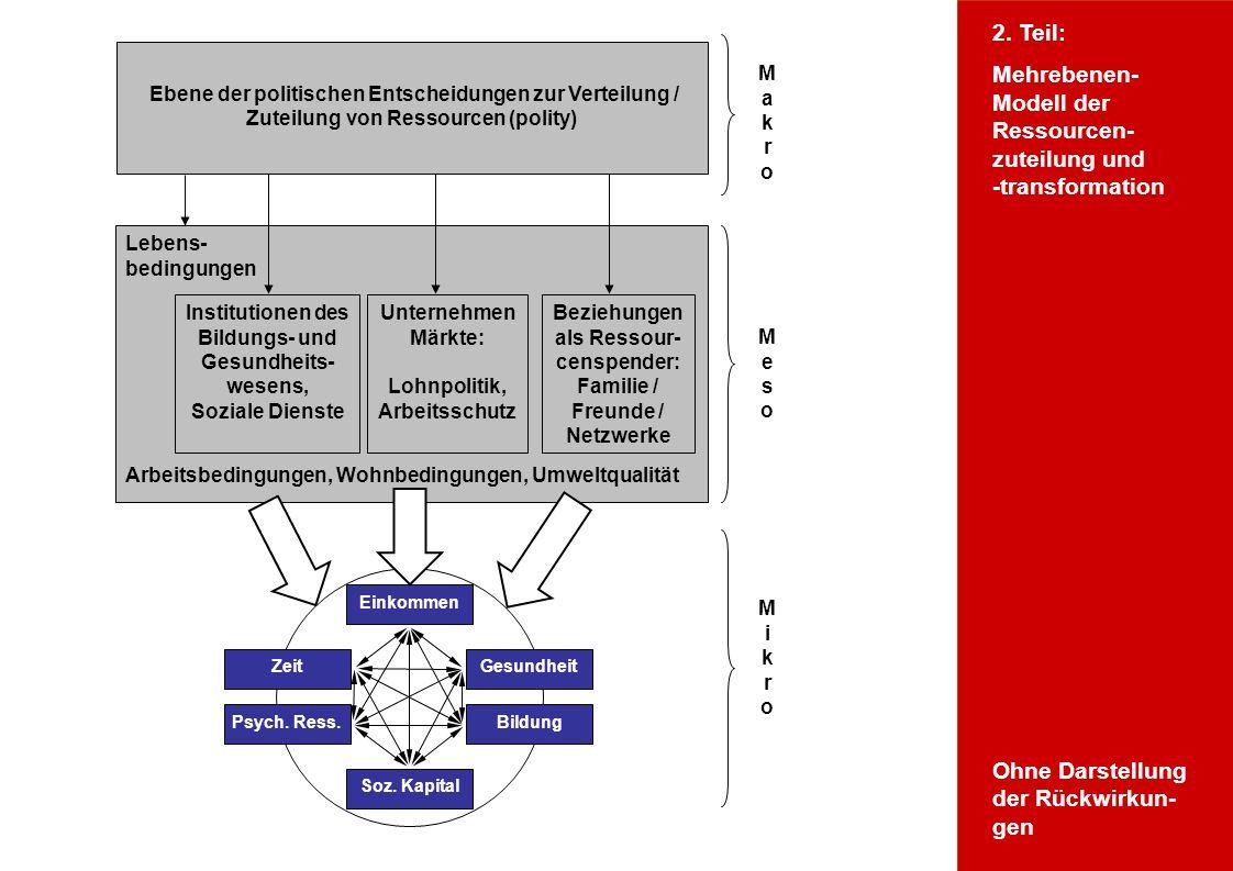 Wofür Ressourcentheorie Mikroebene
