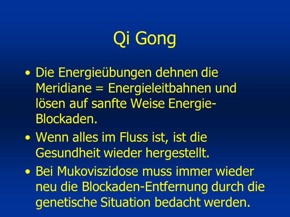 Qi Gong Die Energieübungen dehnen die Meridiane = Energieleitbahnen und lösen auf sanfte Weise Energie-Blockaden.