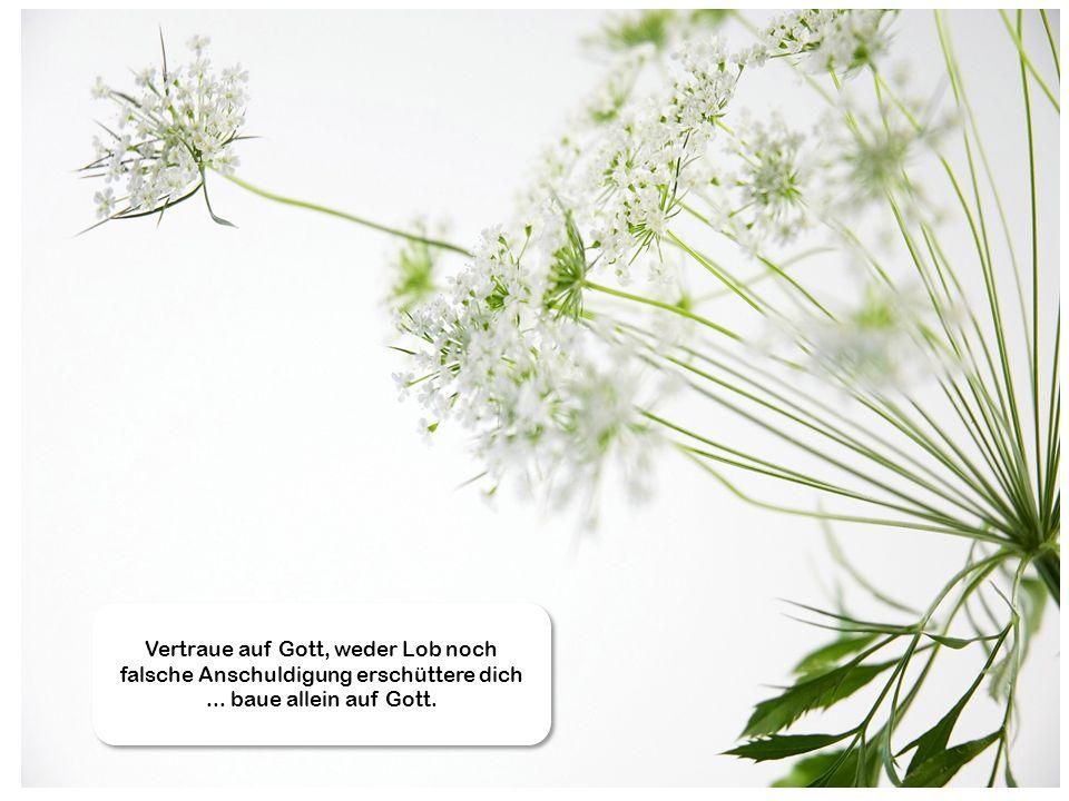 Vertraue auf Gott, weder Lob noch falsche Anschuldigung erschüttere dich ... baue allein auf Gott.