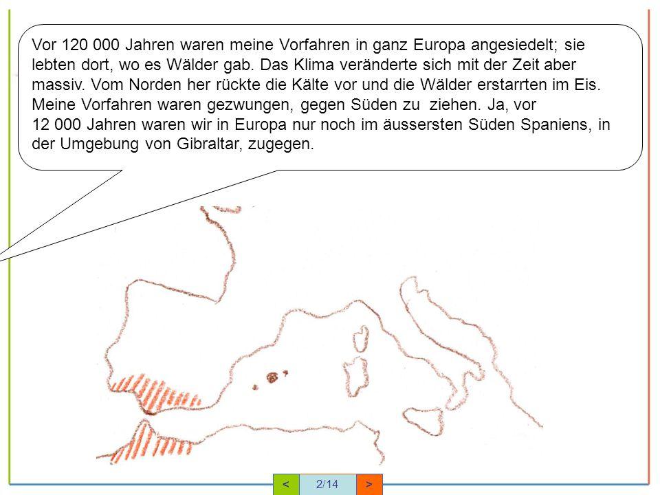 Vor 120 000 Jahren waren meine Vorfahren in ganz Europa angesiedelt; sie lebten dort, wo es Wälder gab. Das Klima veränderte sich mit der Zeit aber massiv. Vom Norden her rückte die Kälte vor und die Wälder erstarrten im Eis. Meine Vorfahren waren gezwungen, gegen Süden zu ziehen. Ja, vor