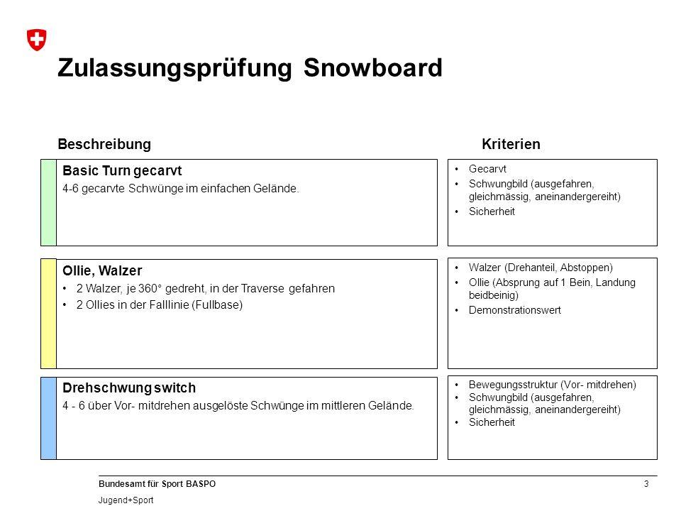 Zulassungsprüfung Snowboard
