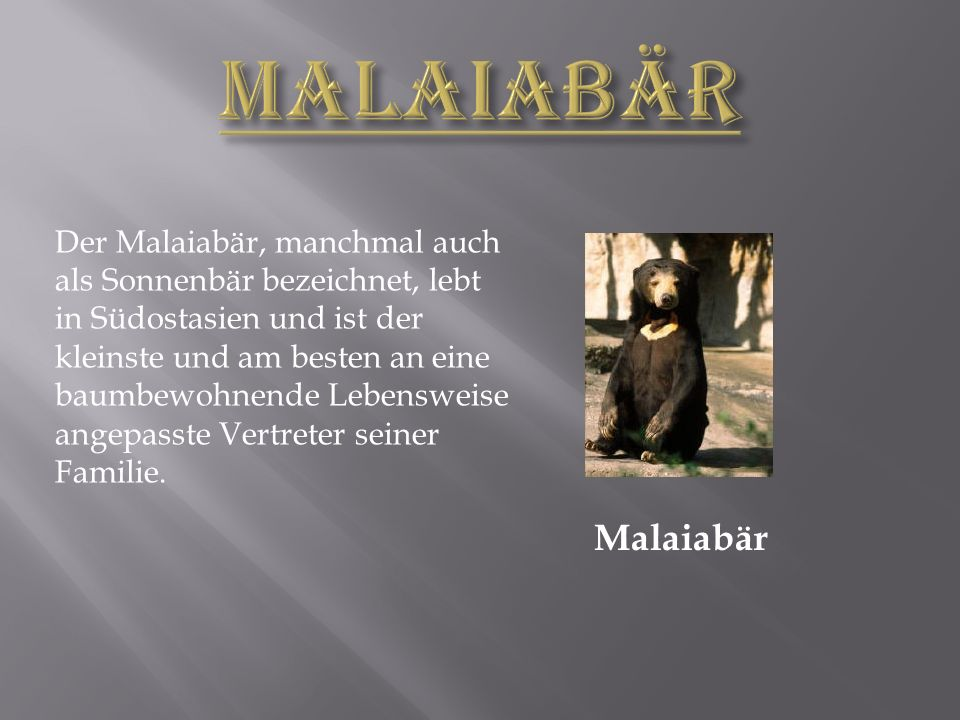 MALAIABÄR