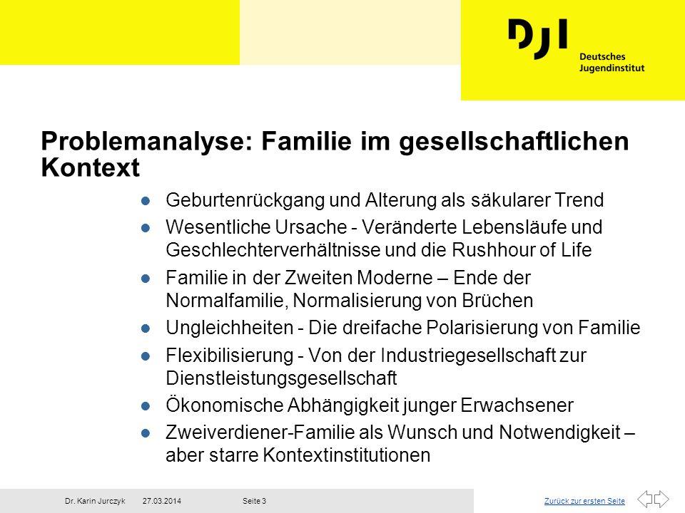 Problemanalyse: Familie im gesellschaftlichen Kontext