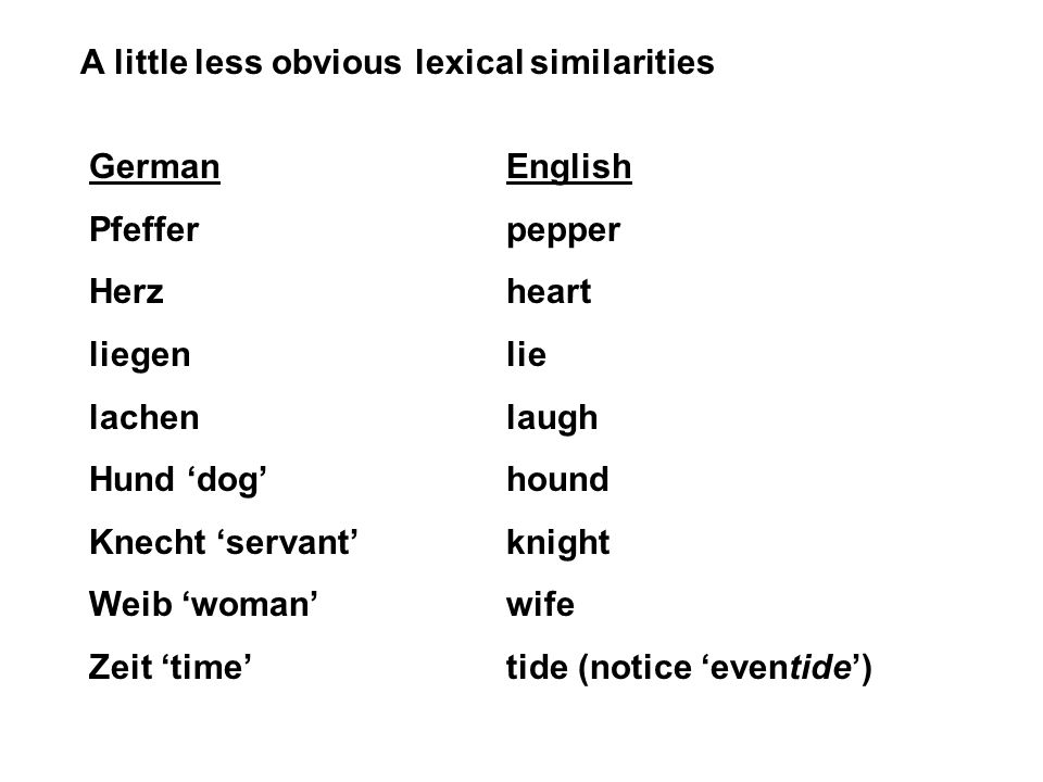 A little less obvious lexical similarities